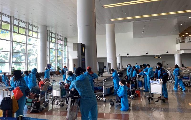 Đưa 310 công dân Việt Nam từ Bắc Âu hồi hương - ảnh 1