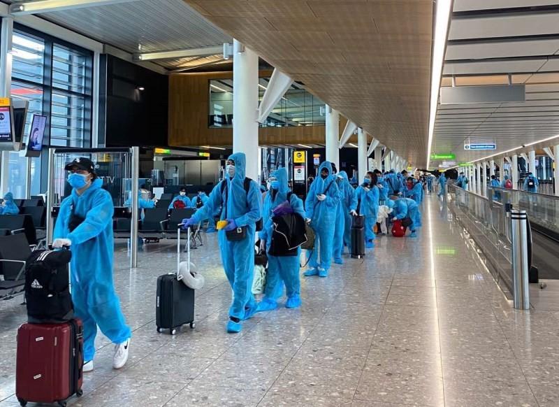 Mạo danh Vietnam Airlines mời mua vé về Việt Nam tránh dịch - ảnh 1