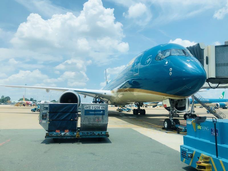 Hàng loạt chuyến bay bị hủy do bão số 6 - ảnh 1