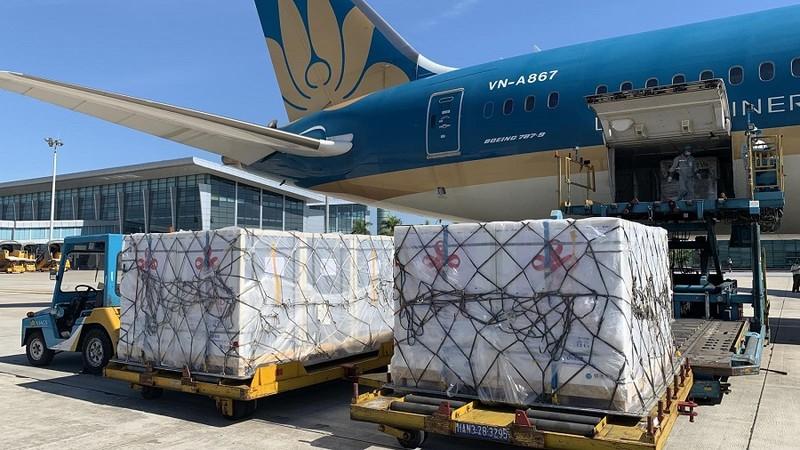 500.000 liều vaccine Trung Quốc viện trợ đã về Việt Nam - ảnh 1