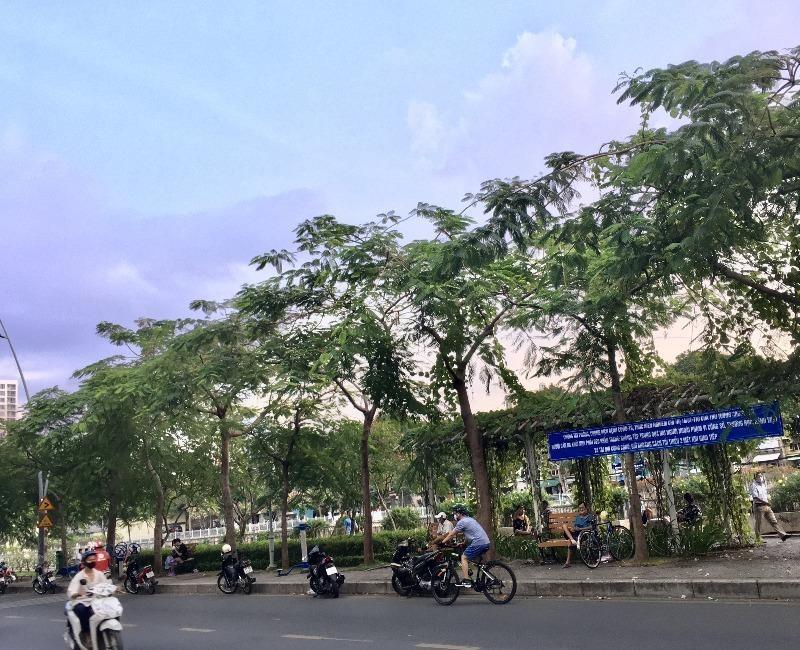 TP.HCM: Nhiều tuyến đường, công viên tụ tập đông người  - ảnh 3