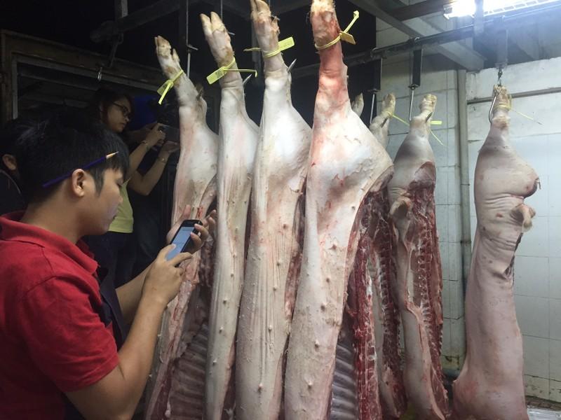 Giữa đêm kiểm tra 'lý lịch' heo vào chợ tại TP.HCM - ảnh 1