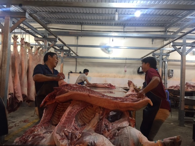 Giữa đêm kiểm tra 'lý lịch' heo vào chợ tại TP.HCM - ảnh 2