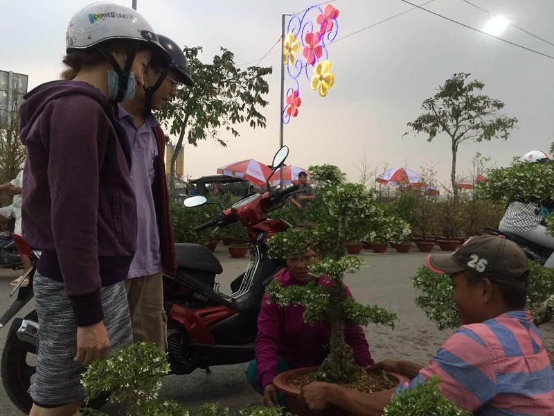 Chợ Bình Điền khai mạc Chợ hoa xuân 2018 - ảnh 1