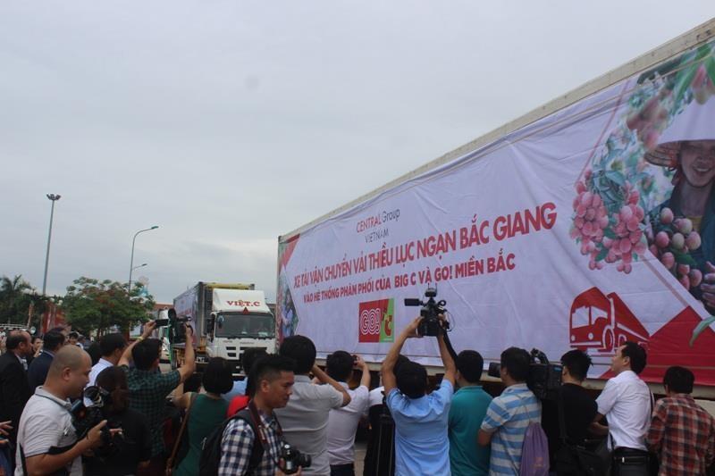 Đại gia Thái Lan tuyên bố mua 350 tấn vải thiều Lục Ngạn - ảnh 1