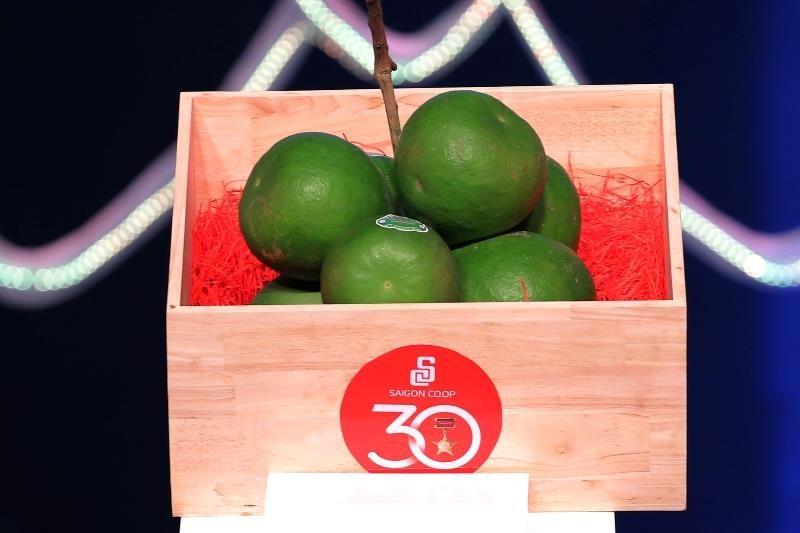 2 trái bưởi Việt giá siêu đắt 120 triệu đồng có gì đặc biệt? - ảnh 1