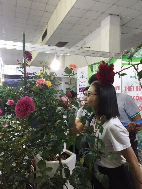 Quận Tân Bình khai mạc hội chợ khuyến mãi 2019 - ảnh 2