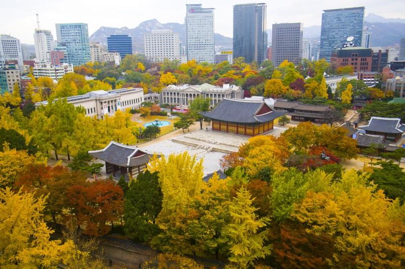 Hàn Quốc vô hiệu hóa tạm thời visa ngắn hạn  - ảnh 1