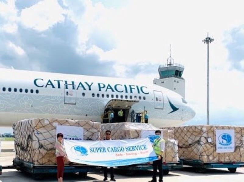 8 chiếc máy bay khủng chở sản phẩm y tế từ Việt Nam đến Mỹ   - ảnh 1