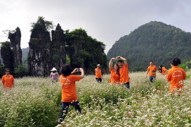 Rất nhiều người Việt vẫn có ý định du lịch sau COVID-19 - ảnh 1