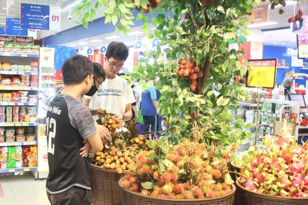 Trái vải đặc sản Việt Nam vào đại siêu thị Thái Lan  - ảnh 1