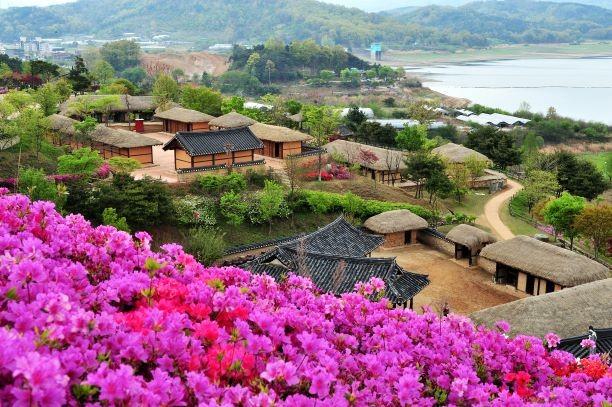 Lượng khách Việt đến Hàn Quốc giảm sâu chưa từng thấy - ảnh 1