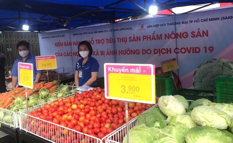 Siêu thị TP.HCM bán nông sản Hải Dương không lợi nhuận - ảnh 1