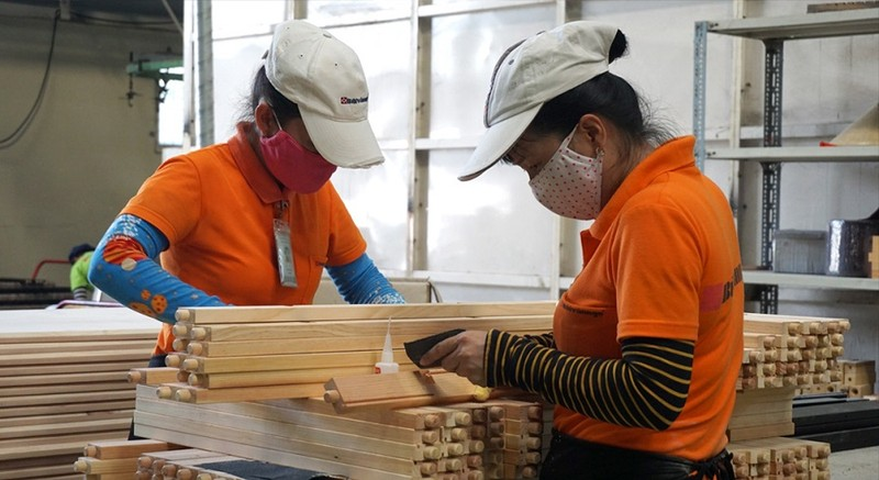 Gần 100% nhà máy của doanh nghiệp gỗ tại TP.HCM dừng hoạt động - ảnh 1