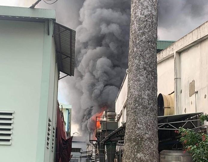 Cháy lớn tại Khu chế xuất Linh Trung 1, TP.HCM - ảnh 2