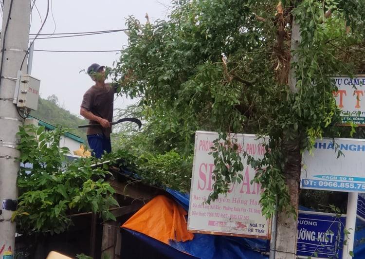 Phú Yên: TX Sông Cầu di dời hơn 37.000 dân tránh bão số 9 - ảnh 3