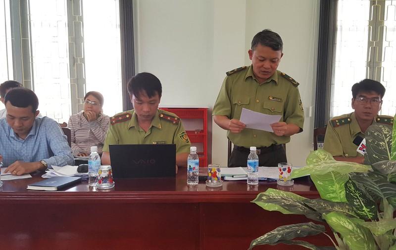 Công bố thanh tra vụ phá rừng nuôi bò ở Phú Yên - ảnh 1