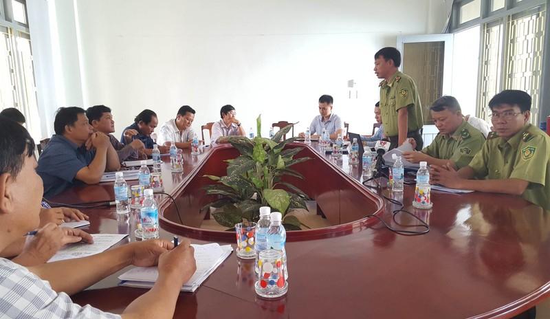 Công bố thanh tra vụ phá rừng nuôi bò ở Phú Yên - ảnh 2