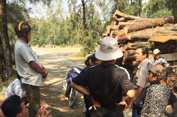 Buộc HTX phá rừng phòng hộ trồng lại rừng - ảnh 1