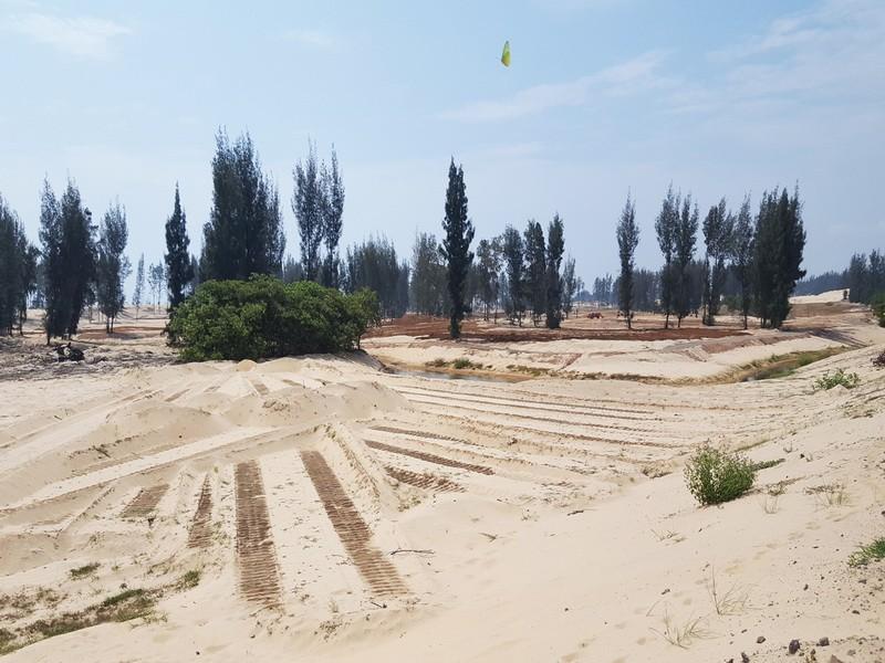 Bắt đầu thanh tra vụ phá rừng làm sân golf ở Phú Yên  - ảnh 3
