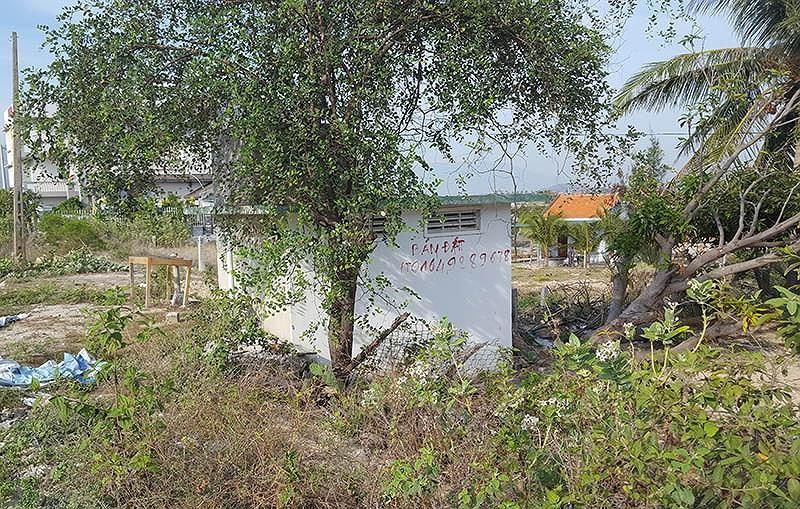 Chính thức dỡ bỏ 'lệnh' cấm giao dịch đất Bắc Vân Phong - ảnh 1