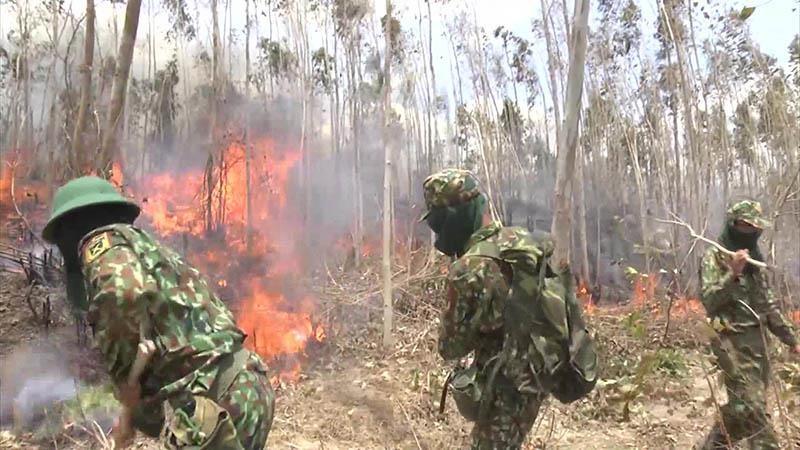 Gần 500 người dập đám cháy rừng kéo dài 2 ngày đêm  - ảnh 1
