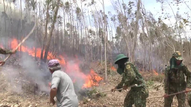 Gần 500 người dập đám cháy rừng kéo dài 2 ngày đêm  - ảnh 2