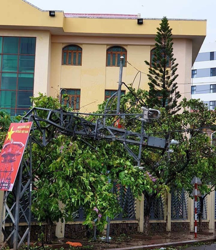 Bão số 5 đánh hỏng hơn 70 tàu cá ở Quy Nhơn - ảnh 10
