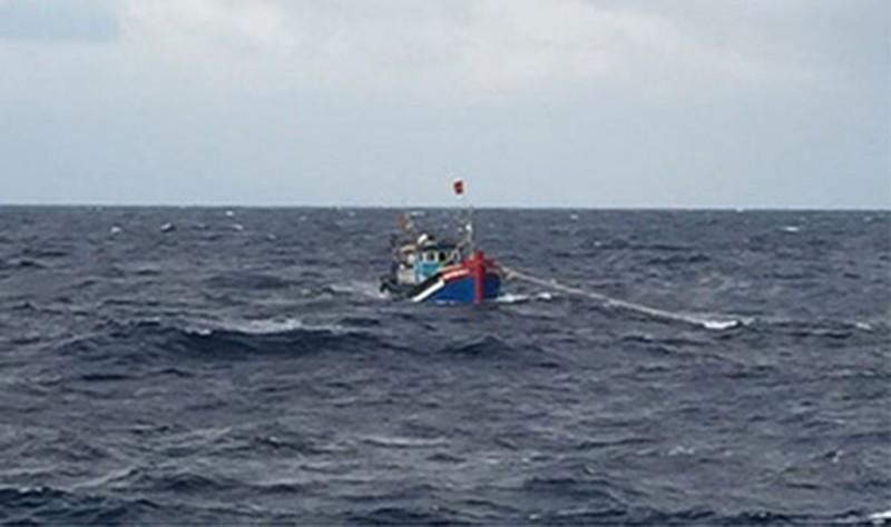 Bình Định: 4 chủ tàu cá bị phạt 3,6 tỉ đồng - ảnh 1