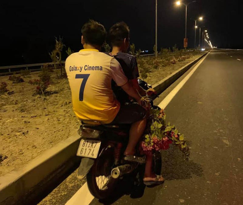Hơn 3.000 cây hoa giấy trên quốc lộ ngàn tỉ bị lấy trộm - ảnh 2