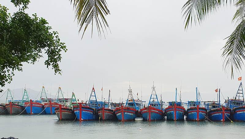 Các tỉnh Nam Trung Bộ khẩn cấp ứng phó với đợt mưa lớn - ảnh 1