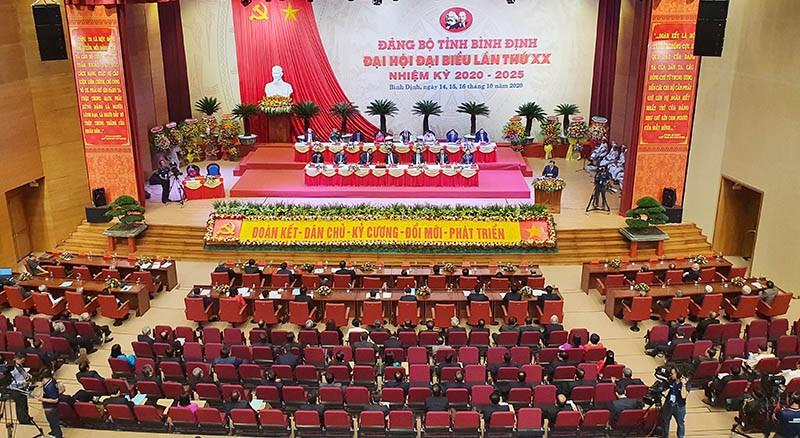 Xây dựng Bình Định thành tỉnh phát triển nhóm đầu miền Trung - ảnh 1