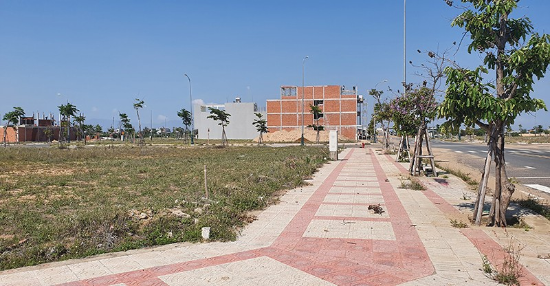 Nữ chủ tịch HĐQT công ty mua sỉ 262 lô đất ở Phú Yên bị bắt - ảnh 2