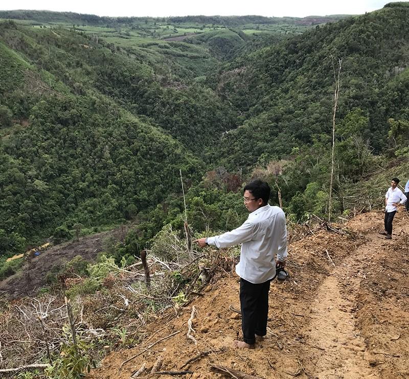 Bắt 2 người phá rừng tự nhiên khu Hòn Đót ở Phú Yên - ảnh 3