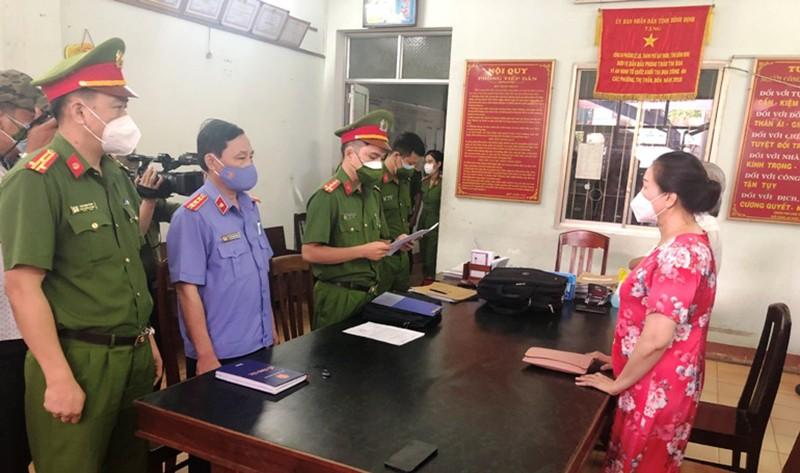 Nữ chủ tịch HĐQT công ty mua sỉ 262 lô đất ở Phú Yên bị bắt - ảnh 1