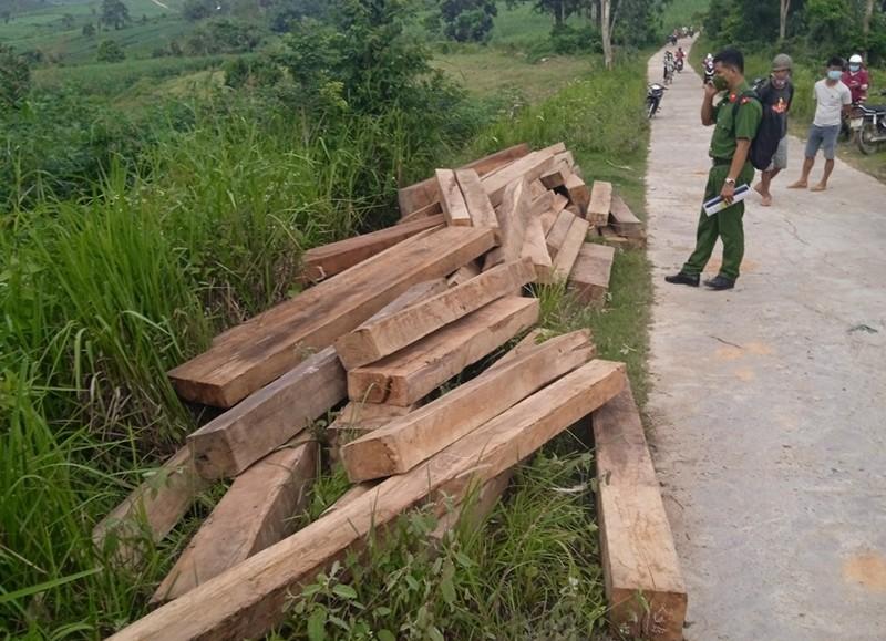 Nhà nhân viên bảo vệ rừng ở Phú Yên cất giấu nhiều gỗ trái phép  - ảnh 1