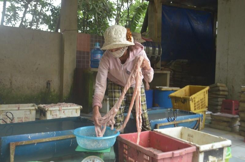Phát hiện cơ sở dùng hóa chất Trung Quốc chế biến mỡ bẩn - ảnh 1