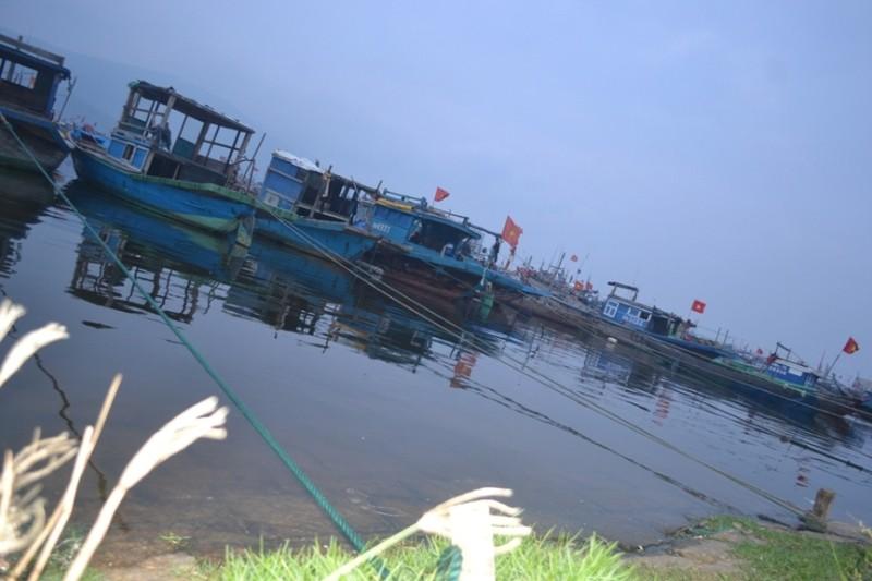 Tàu thuyền neo đậu để tránh bão số 4 tại âu thuyền Thọ Quang.