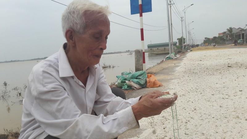 """""""Lúa bị nước lũ ngâm, nảy mầm hư hết rồi con ơi!"""" - ảnh 6"""