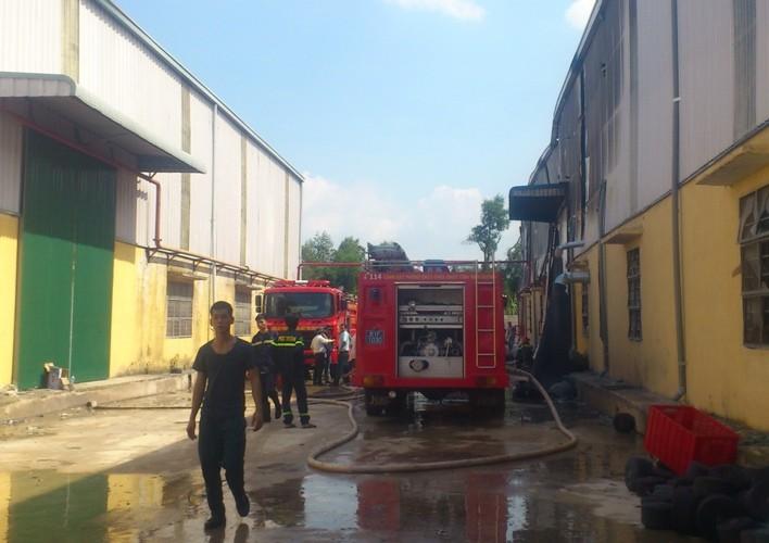 Cơ sở sản xuất găng tay bùng cháy tại Bình Dương - ảnh 2