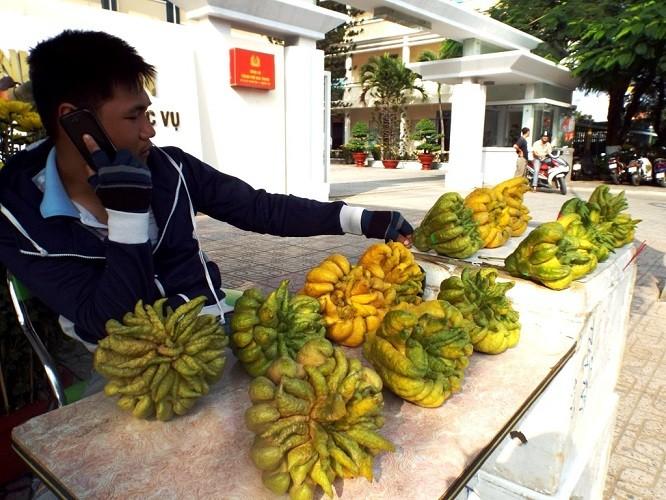 27 Tết - phố biển Nha Trang nắng ngập tràn - ảnh 4