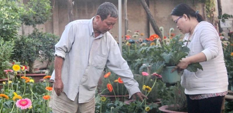 Nhà vườn cung ứng 1,9 triệu chậu hoa kiểng phục vụ tết - ảnh 2