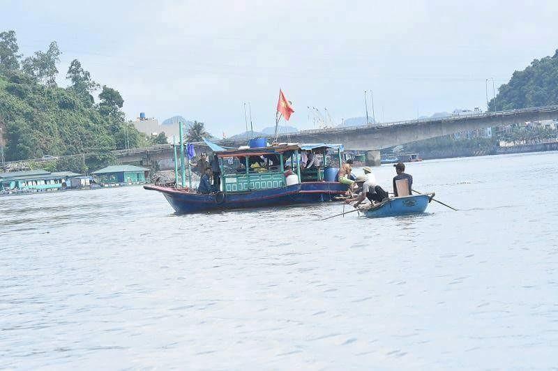 Tìm thấy nạn nhân trong vụ tàu thủy đâm chìm tàu ngư dân - ảnh 2