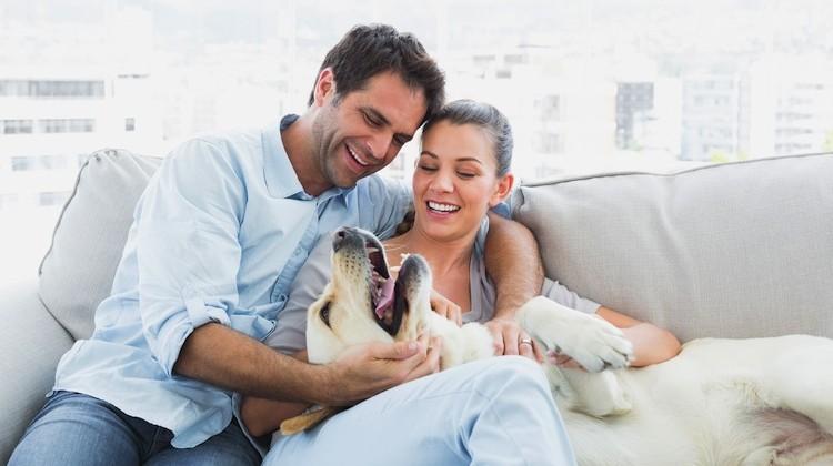Để chồng hạnh phúc hơn - ảnh 1