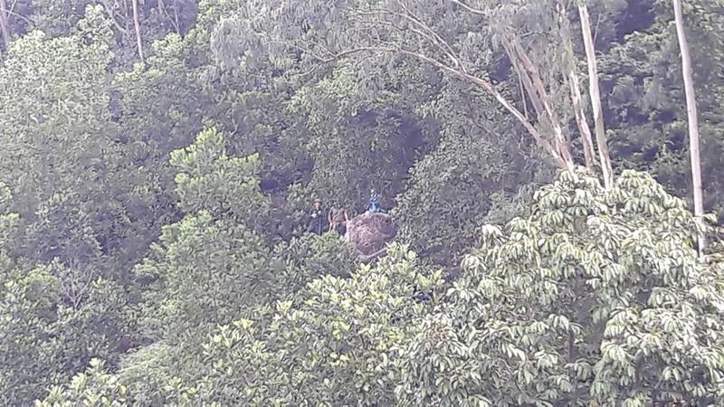 4 hướng tiếp cận tìm trực thăng mất tích trên núi Dinh - ảnh 4