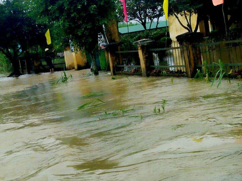 Quảng Nam thiệt hại 220 tỉ, Quảng Ngãi ngập nặng - ảnh 3