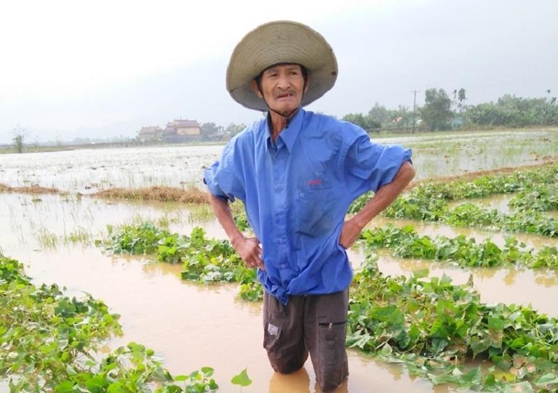 Quảng Nam thiệt hại gần 500 tỉ đồng sau lũ - ảnh 1