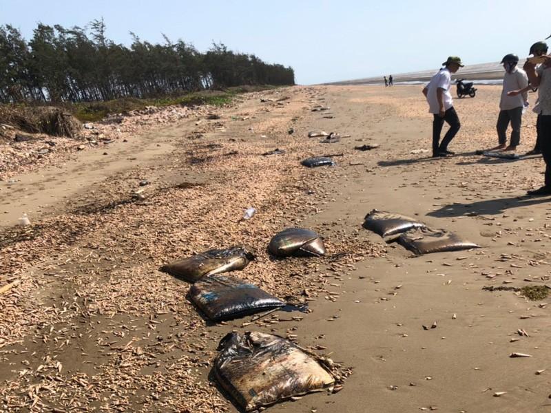 Hàng loạt vết dầu vón cục trôi dạt vào bờ biển Bến Tre - ảnh 2