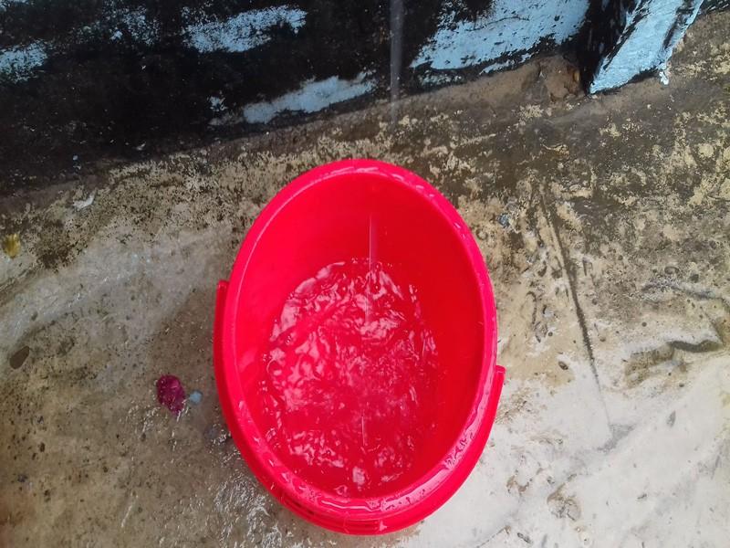 Nhiều nơi ở miền Tây đón cơn mưa giải hạn - ảnh 6