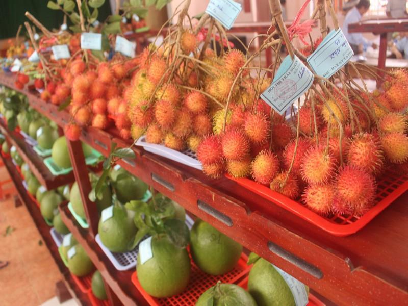 Mất mùa vì hạn mặn, Bến Tre không tổ chức lễ hội cây trái ngon - ảnh 1